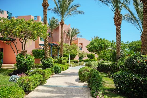 Chodnik w letnim parku z palmami.