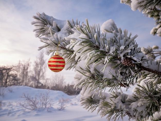 Choinka ze śniegiem i świąteczna piłka świąteczna zima tło z bokeh kartą noworoczną