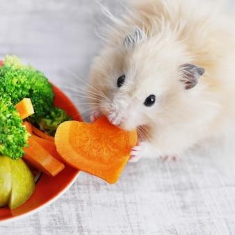 Chomik jedzenia marchewki