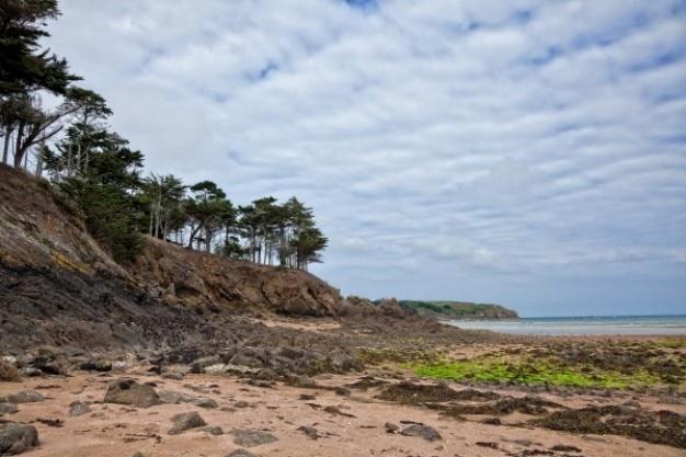 Chropowaty plaża krajobraz hdr