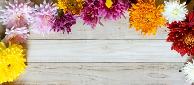 Chryzantema jesienny bukiet kopia przestrzeń blanc papier kolorowy kolorowy makieta