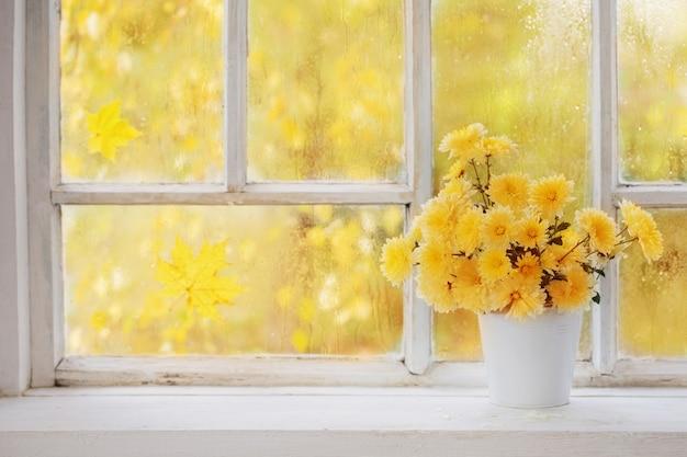 Chryzantemy w wazonie na parapecie jesienią