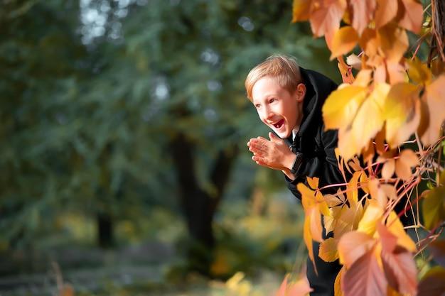 Chytry chłopiec wygląda zza drzewa z żółtymi jesiennymi liśćmi i pociera dłonie.