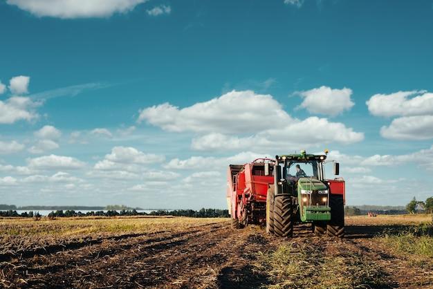 Ciągnik zbiera ziemniaki na polu. wizerunek branży rolniczej.