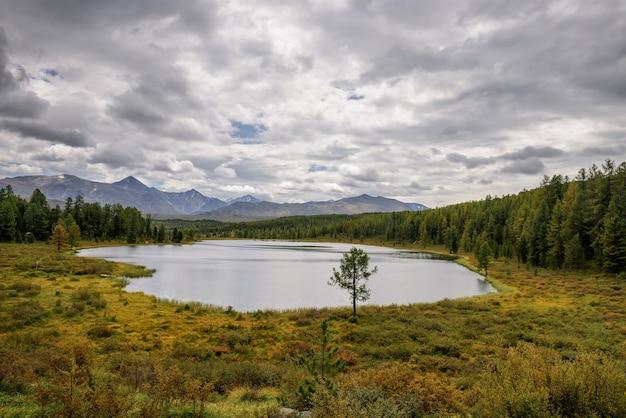 Ciche jezioro wśród górskich szczytów i lasów sosnowych, zachmurzone niebo. idylliczna panorama jesieni, alpejski krajobraz.