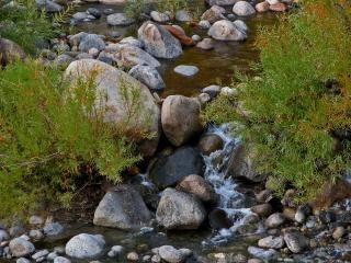 Ciche rzeki