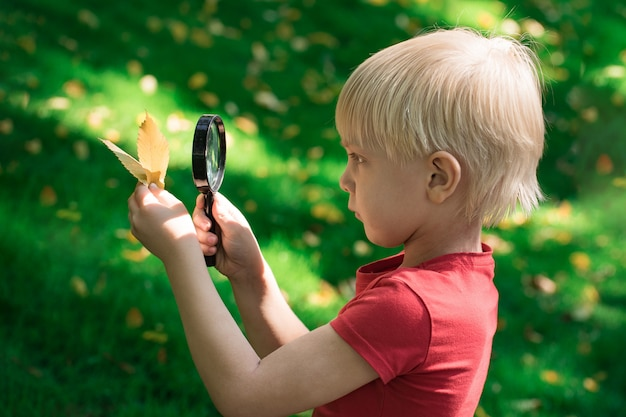 Ciekawy chłopiec trzyma liść i przy użyciu szkła powiększającego, aby spojrzeć. poważny facet eksplorujący środowisko