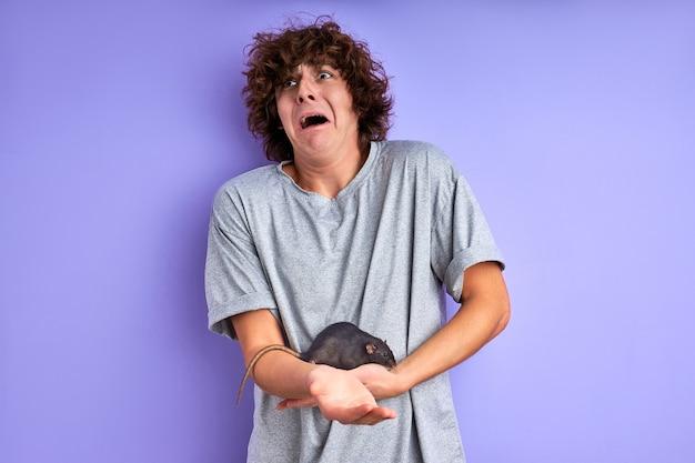 Ciekawy szary szczur czołgający się po ramieniu mężczyzny, facet boi się szczura ozdobnego, krzyczy ze strachu