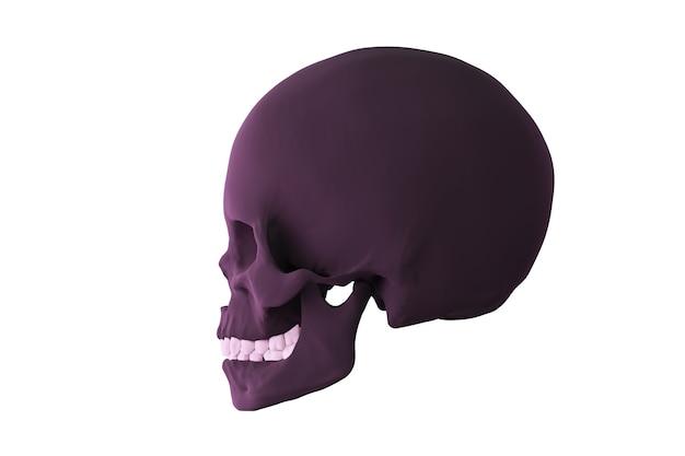 Ciemna czaszka w profilu na białym tle na biały render 3d