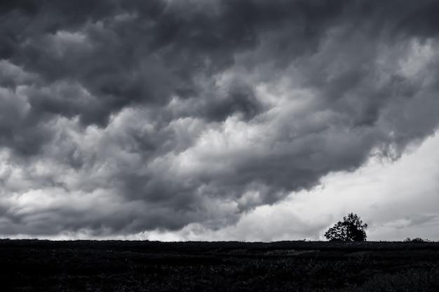 Ciemne burzowe chmury nad równiną, samotne drzewo na polu przed burzą.