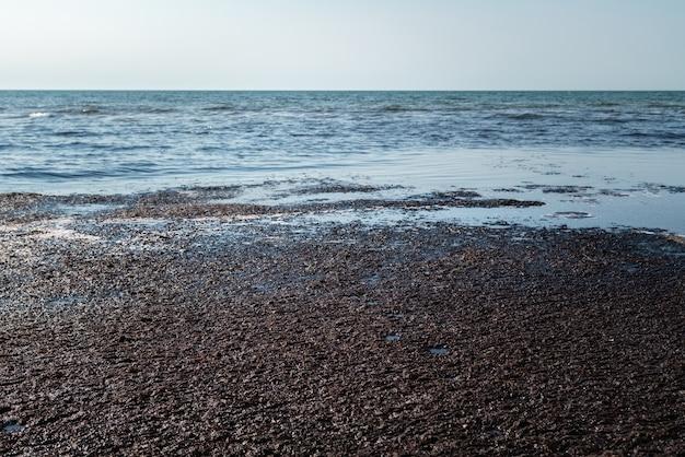 Ciemne śmierdzące odpady na powierzchni wody