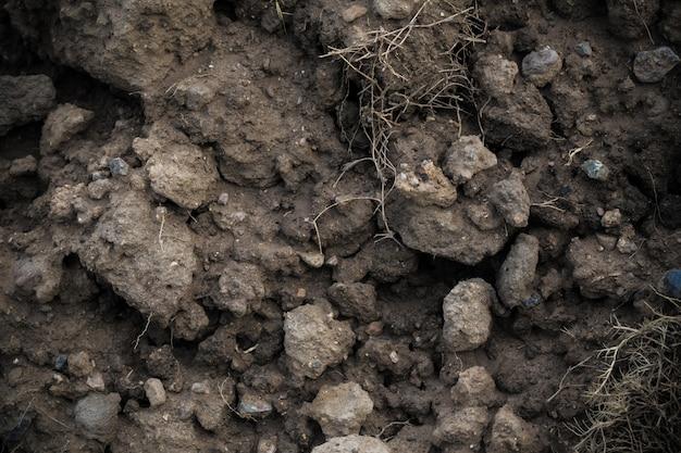 Ciemne tło gleby
