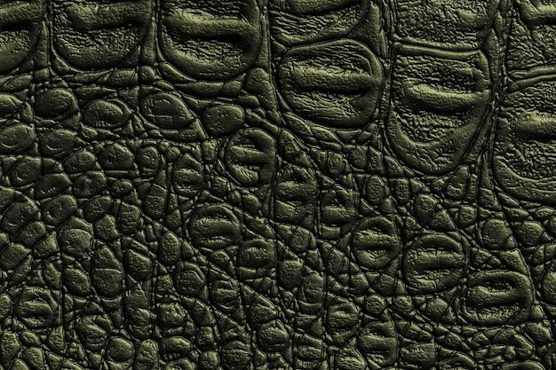 Ciemnozielona skórzana tekstura, zbliżenie. gadowa oliwkowa skóra, makro. struktura naturalna tekstyliów.