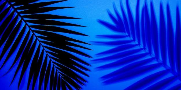 Ciemnozielone liście palm tropikalnych na białym tle na fioletowym niebieskim tle gradientowym. projekt zaproszeń, ulotek. abstrakcyjne szablony do plakatów, okładek, tapet z copyspace dla tekstu.