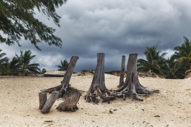 Ciemny chmurny niebo podczas pogody sztormowej na kailua plaży na oahu wyspie, hawaje