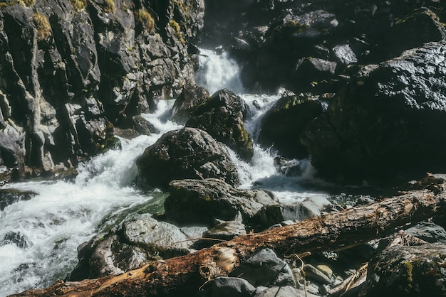 Ciemny, klimatyczny górski krajobraz z wzburzoną górską rzeką wśród czarnych skał z mchem w wąskim wąwozie. piękna alpejska sceneria z pniem drzewa na mokrych, omszałych kamieniach w pobliżu potężnej górskiej rzeki