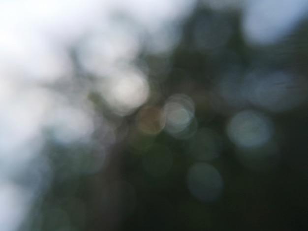 Ciemny zielony liść las niewyraźne streszczenie tło z białym bokeh