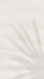 Cień liścia palmowego na tle z teksturą piasku z miejscem na kopię