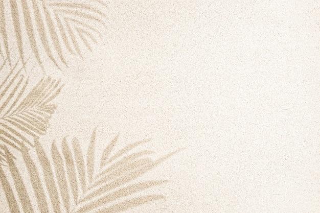 Cień liścia palmy na piasku, widok z góry, kopia przestrzeń