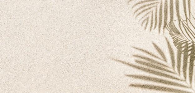 Cień liścia palmy na piasku, widok z góry, miejsce