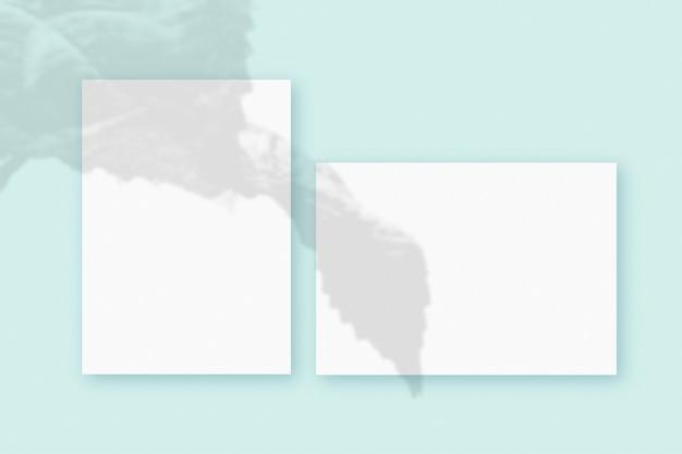 Cienie roślin nałożone na 4 poziomy i pionowy arkusz teksturowanego białego papieru na zielonym tle stołu