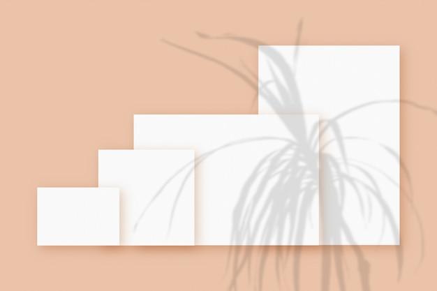 Cienie roślin nałożone na kilka poziomych i pionowych arkuszy teksturowanego białego papieru na beżowym tle stołu