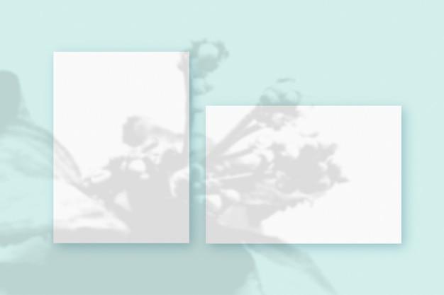 Cienie roślin nałożone na poziomy i pionowy arkusz teksturowanego białego papieru na niebieskim tle stołu