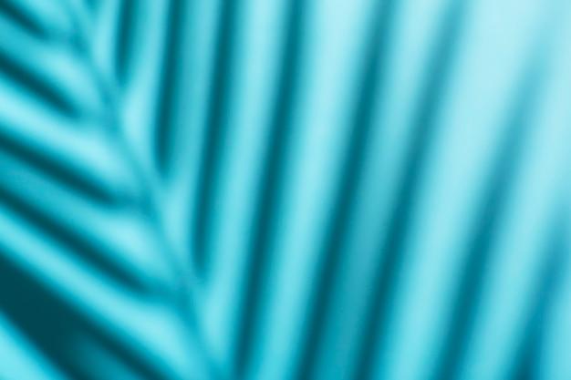 Cienie tropikalnych palm i liści na ścianie