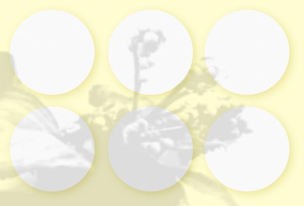 Cienie warzyw nałożone na 6 okrągłych arkuszy teksturowanego białego papieru na żółtym tle stołu table