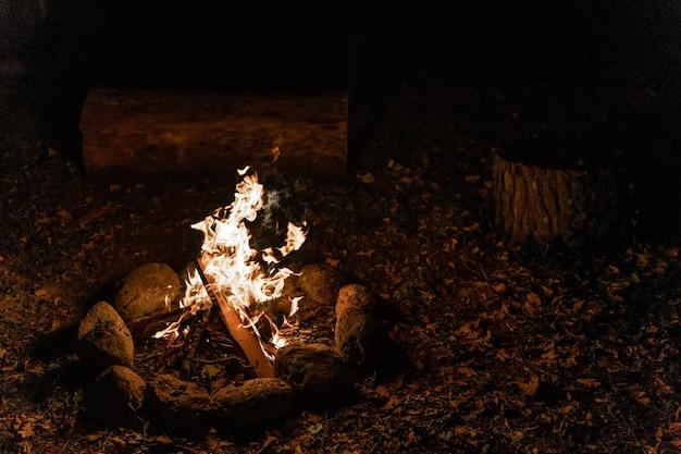 Ciepłe i przytulne ognisko w lesie ognisko stawu na wakacjach podczas biwakowania