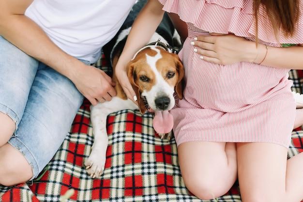 Ciężarna żona z mężem i zabawnym psem para rodziny czeka na dziecko