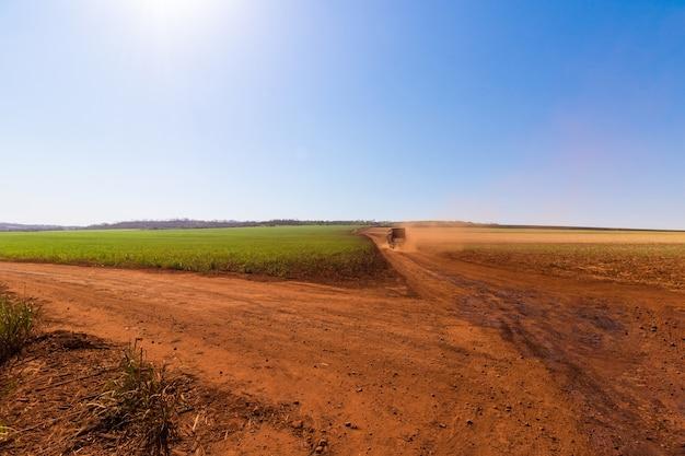 Ciężarówka na terenach rolniczych, transportująca trzcinę cukrową do młyna w pochmurny dzień. koncepcja obrazu gospodarki rolnej ameryki południowej.