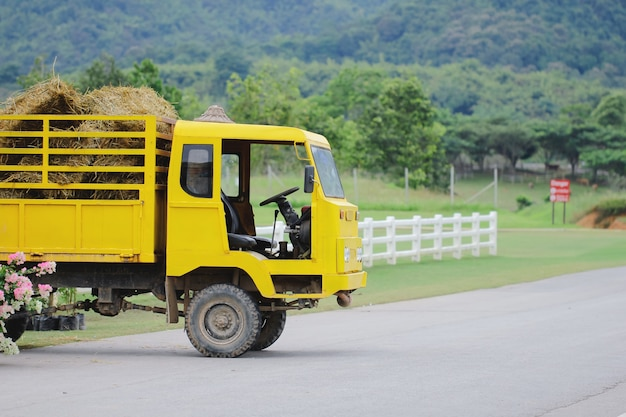 Ciężarówka przewożąca ładunek bel siana. scena rolnicza w wiejskiej okolicy