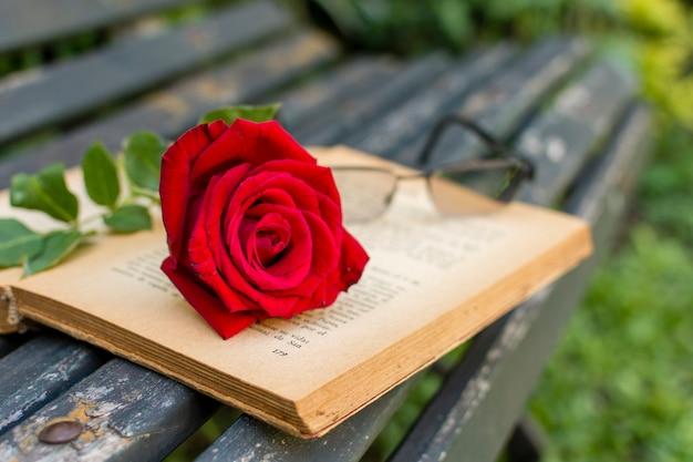 Close-up czerwona róża na górze książki