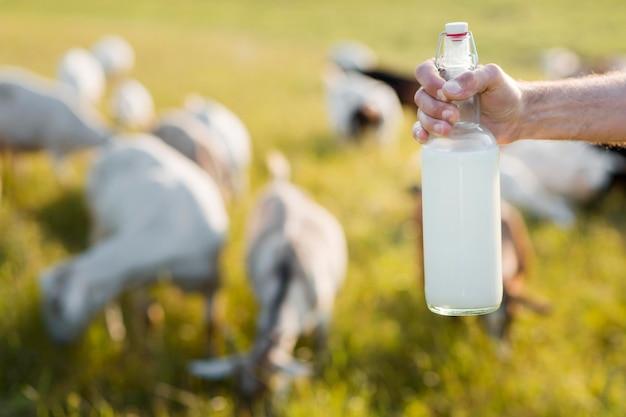 Close-up człowiek z butelką koziego mleka