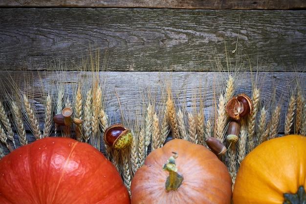 Close-up jesienne dynie i dojrzałe kłosy pszenicy na stole dziękczynienia
