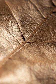 Close-up liść organiczne tło