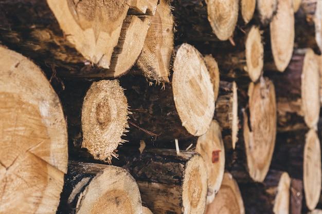 Close-up na stos drewna opałowego