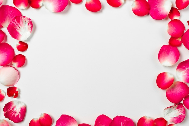 Close-up ramka z płatków róż