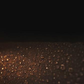 Close-up strzał z pawim piórem z kropelkami na czarnym tle