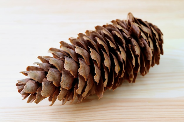Close-up z naturalnych suchej szyszki izolowanych na jasnobrązowym tle drewnianych