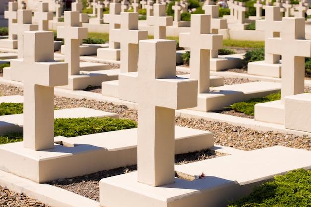 Cmentarz, białe krzyże stoją w rzędach