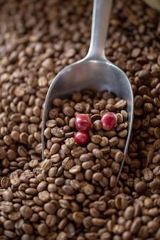 Coffee roasts vintage origins wybór od jasnego do ciemnego
