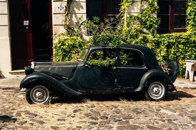 Colonia del sacramento, urugwaj - wrzesień 2019 stary samochód retro z zielenią wewnątrz na ulicy.