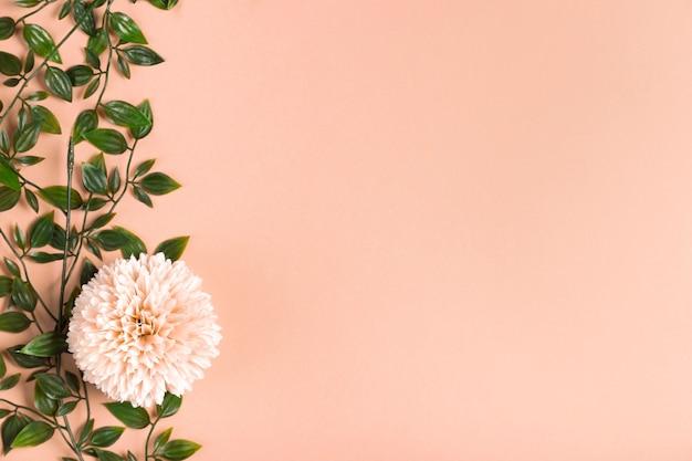 Copy-space kwitnący kwiat z liśćmi