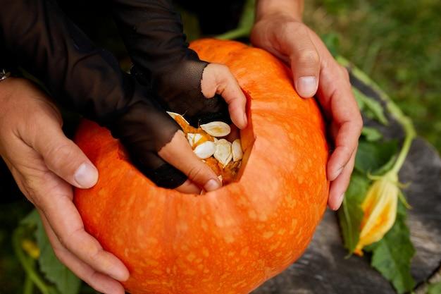 Córka i ojciec wyciągają z dyni nasiona i włóknisty materiał przed rzeźbieniem na halloween. widok z góry, bliska, widok z góry, miejsce