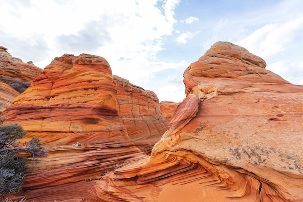 Coyote buttes z obszaru dzikiej przyrody vermillion cliffs, utah i arizona