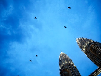 Crow Twin Tower Sky View Concept