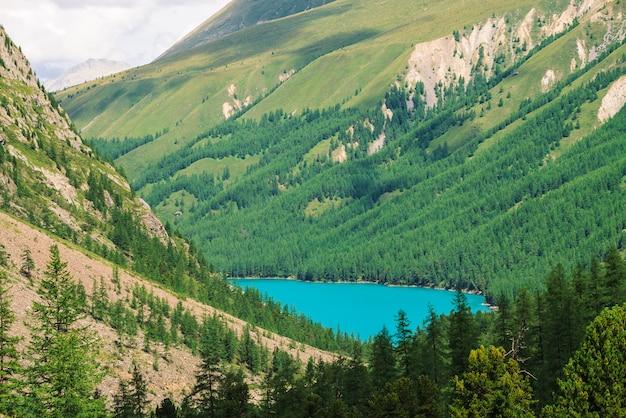 Cudowne górskie jezioro w dolinie wyżyn. gładka, czysta lazurowa powierzchnia wody. gigantyczne zbocze góry z bogatą roślinnością. niesamowity las iglasty. klimatyczny zielony krajobraz majestatycznej przyrody.