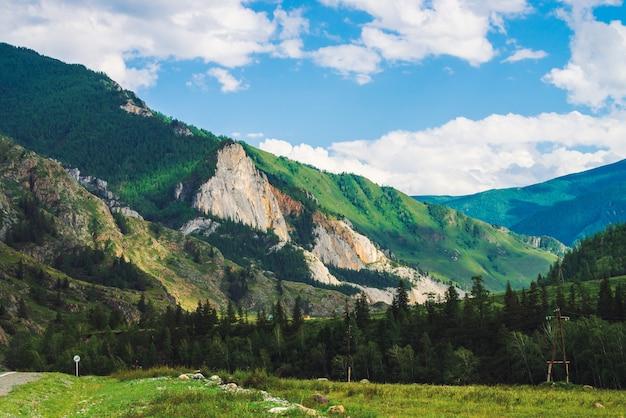 Cudowne góry z pokrywą lasu na zboczu góry w słoneczny dzień.